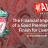 Financial Importance of Good PL Season for LFC